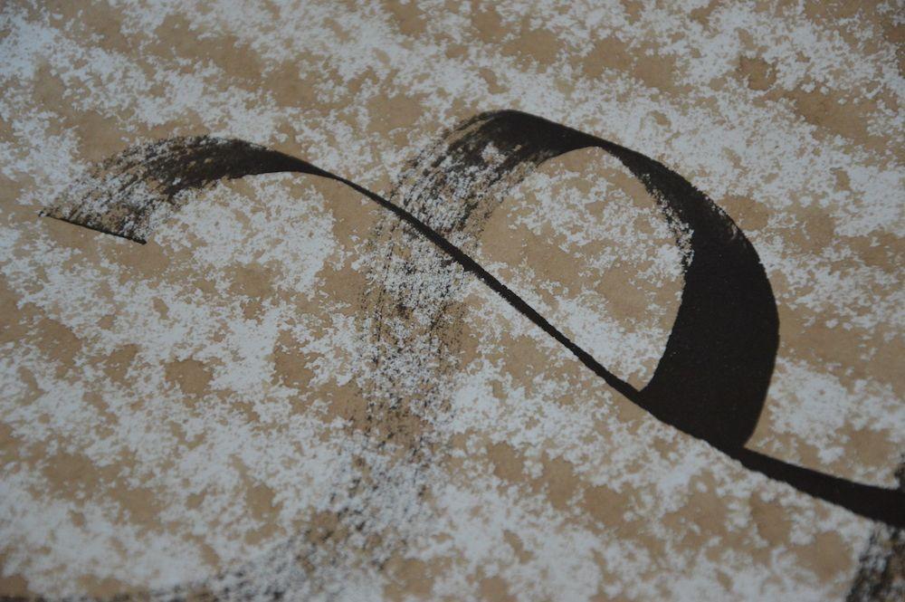 Contemporary canvas calligraphy mini walnut husk V
